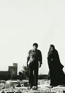فیلم طوطی